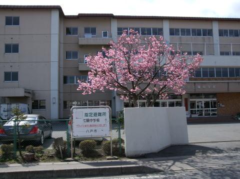 八戸市立江陽中学校